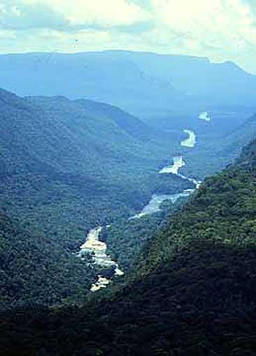 ¿Que son y a que se dedican las Guayanas?